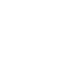 LTS Consulting Logo